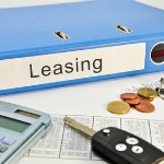 domain leasing